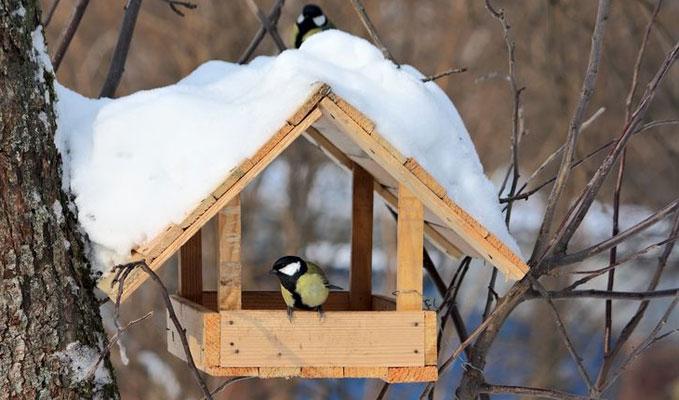 A t�li h�napok nemes feladata: madaraink etet�se