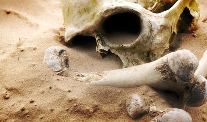 Body Farm - Avagy a holttestek mezeje
