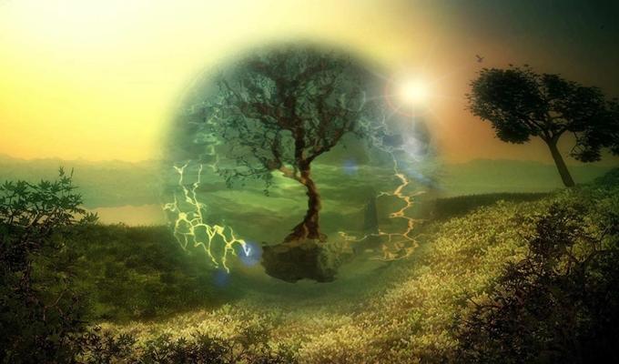 Kozmikus kelta n�v�nyhoroszk�p - Melyik n�v�ny szimboliz�lja bels� �nedet?