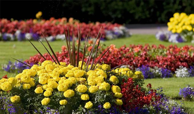 �gy tartsd rendben a vir�gos kertedet!
