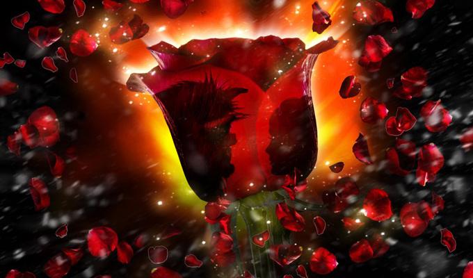Mi várható a szerelemben? - A misztikus rózsák jóslata elárulja!