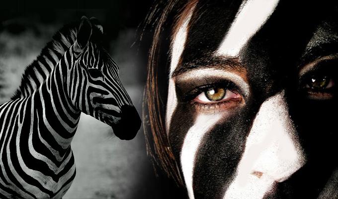 A zebra-teszt - Fedezd fel szem�lyis�ged legf�bb ir�nyvonalait