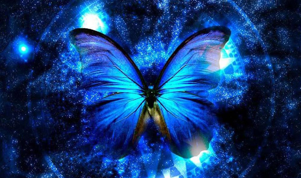Pillangó teszt - Mi a jelenlegi életfeladatod a boldogság érdekében?