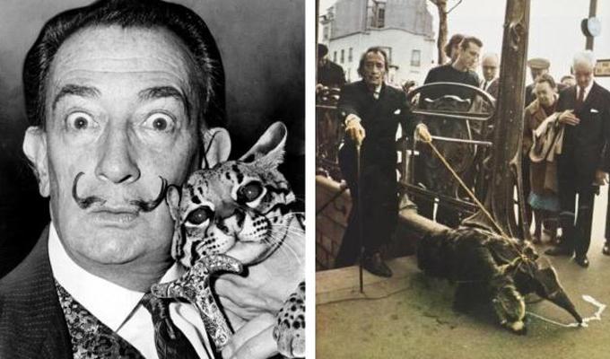 7 híres történelmi személy és az ő abszurd házi kedvenceik - És még azt hitted te vagy állatbolond?!