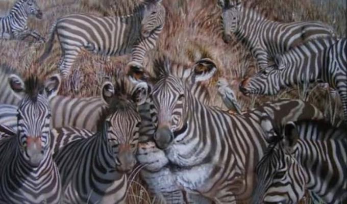 Milyen állatot pillantottál meg legelőször a képen? - Megmutatja a rejtett személyiségjegyeidet