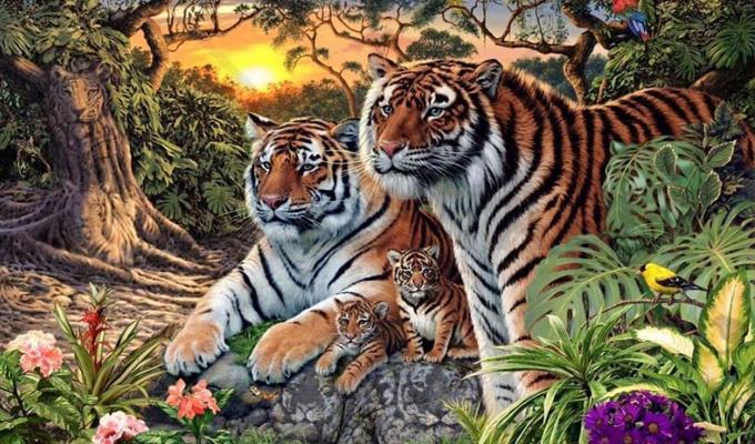 Hány tigrist látsz a képen? - Kevesen találják meg mindet!