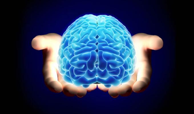 Domináns agyfélteke teszt - Tudj többet a képességeidről!