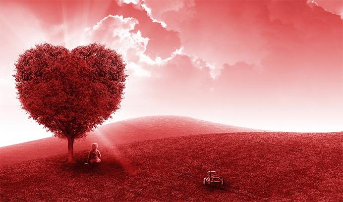 Hogyan alakul a szerelmi életed a nyári hónapokban? - A titokzatos fák elárulják