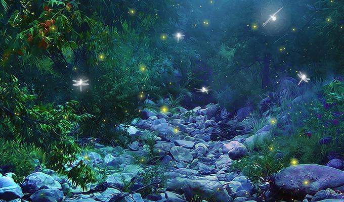 Válassz egy erdőt, és tudj meg valami újat ön magadról - Képes személyiségteszt