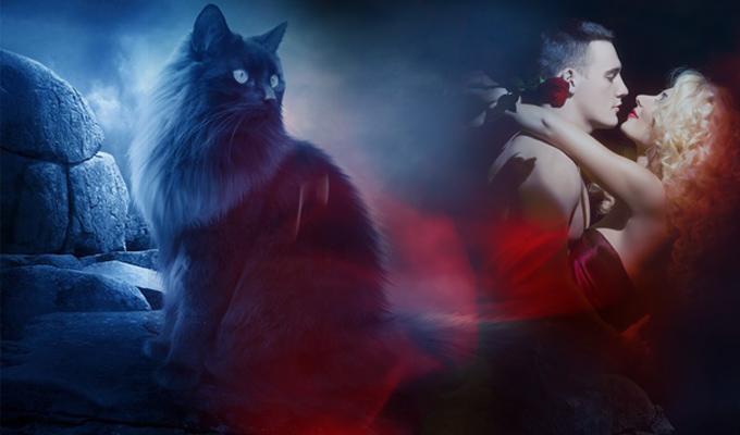 Milyen szerelemben lesz részed a nyáron? - A mágikus Kék Macska megmondja!