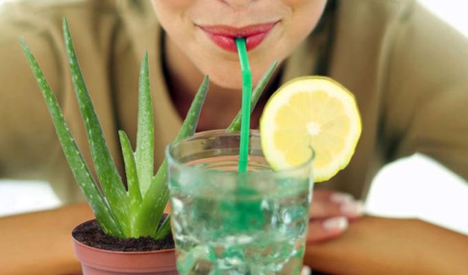 5 egészségügyi kihívás, melyet Aloe Verával könnyedén orvosolhatsz