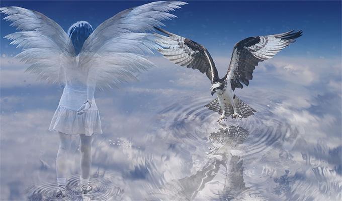 A vasárnapi nap angyalüzenete